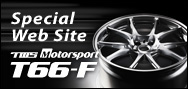 Special Web Site T66-F